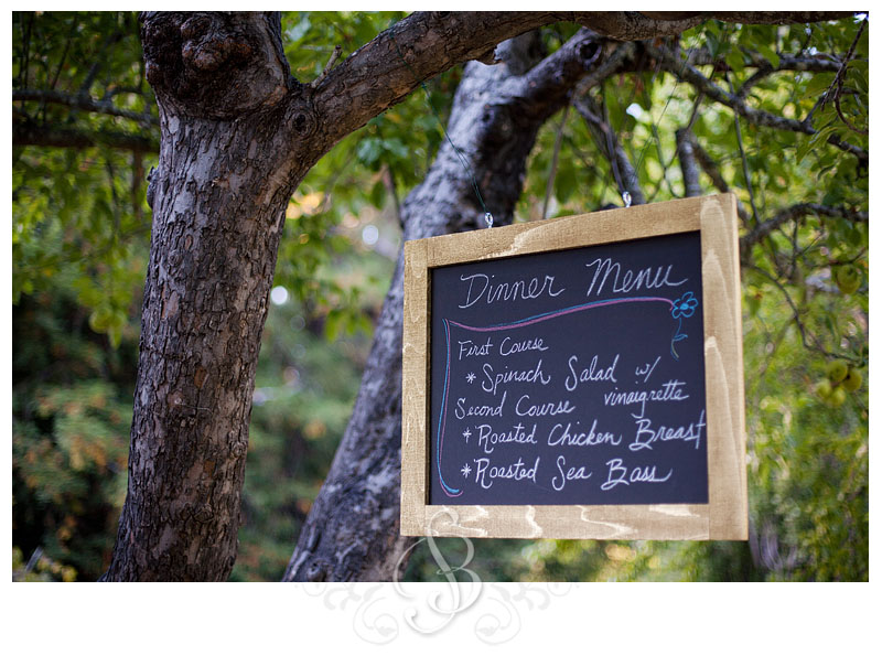 MelissaJames 232 Guerneville Wedding at Dawn Ranch | Melissa & James